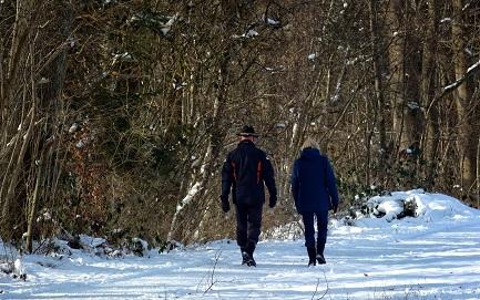 Vox populi: kodėl žmonės vaikšto ir mėgsta tai daryti?
